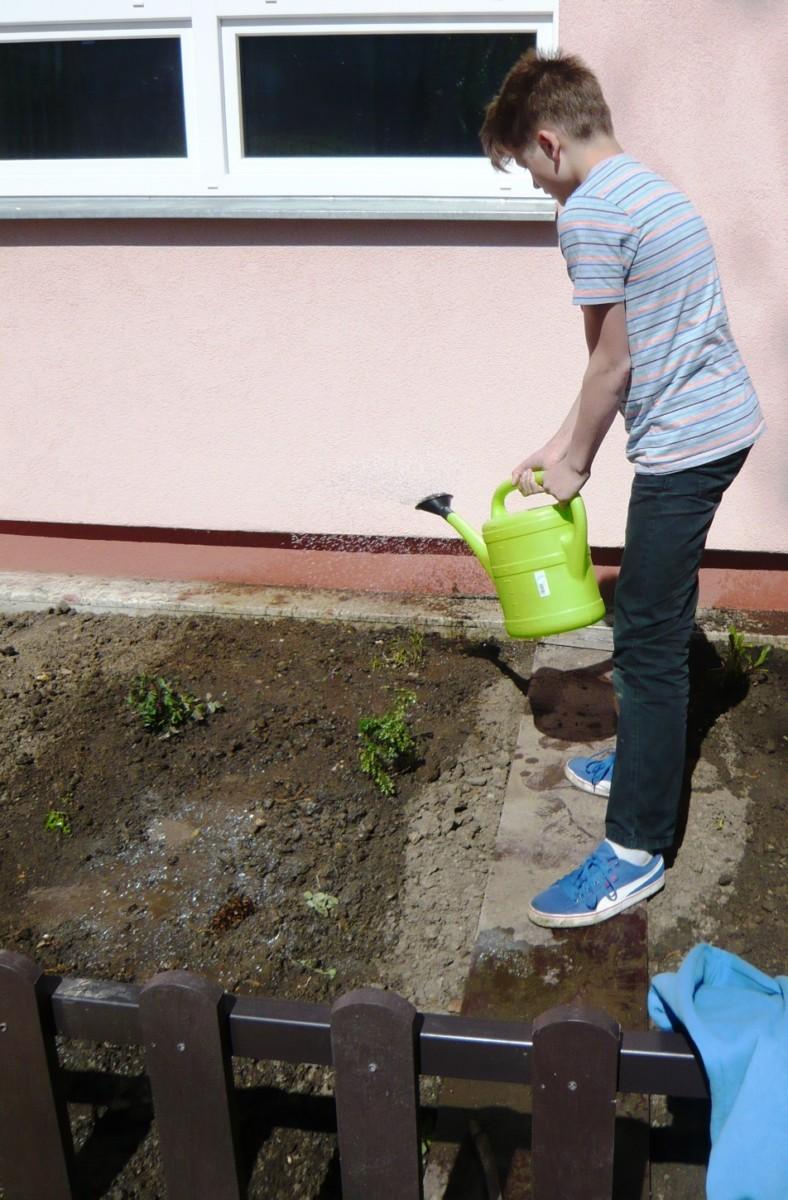 Pracujeme na zahradě