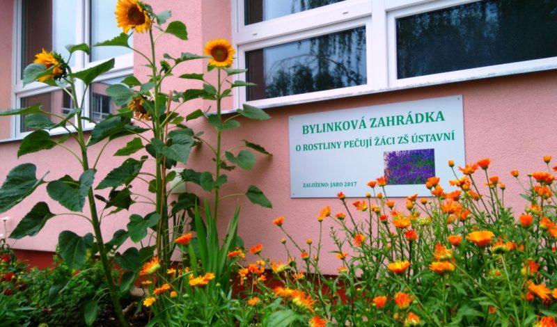 Školní bylinková a zeleninová zahrada