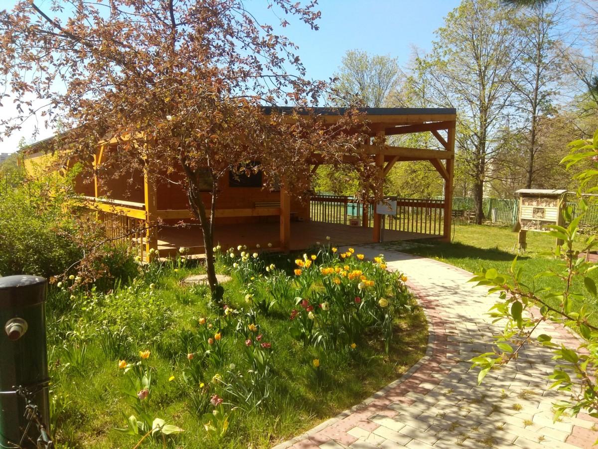 Pozdrav ze školní zahrady